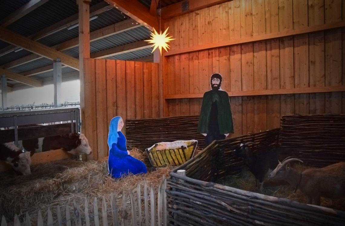 Krippe im Kuhstall Erlebnis Bauernhof Waldmössingen